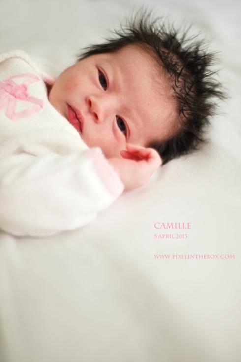 Camille 5 April 2013b